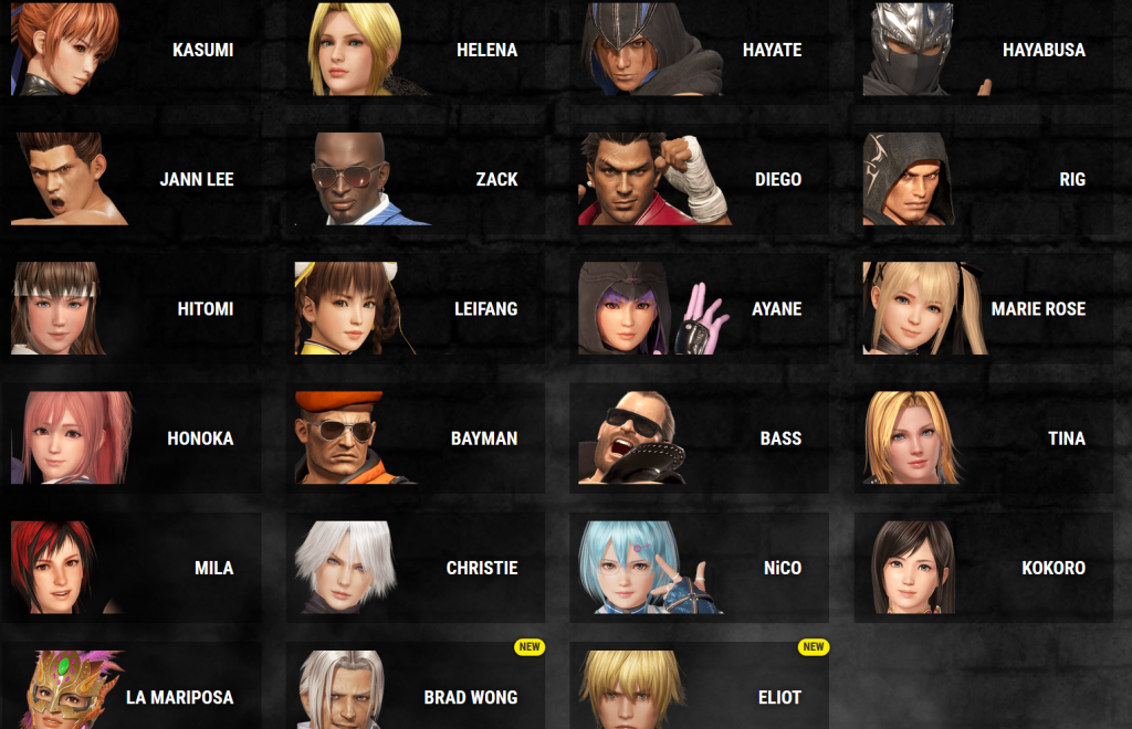Dead or Alive 6 casting